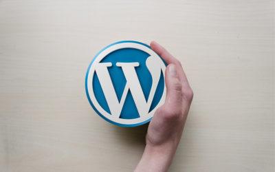 Onderhoud van WordPress, plugins en thema's